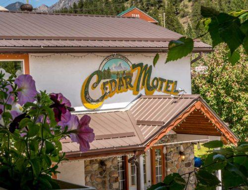 Cedar Motel Sign